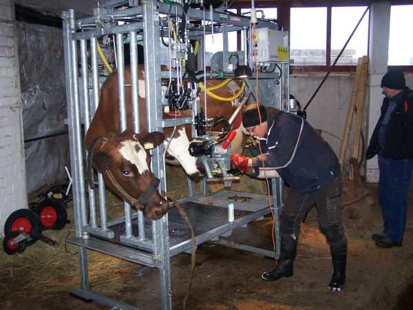 Satisfied customers from the Latvia with our 650-SP2 (H) HOOF TRIMMING CRUSH