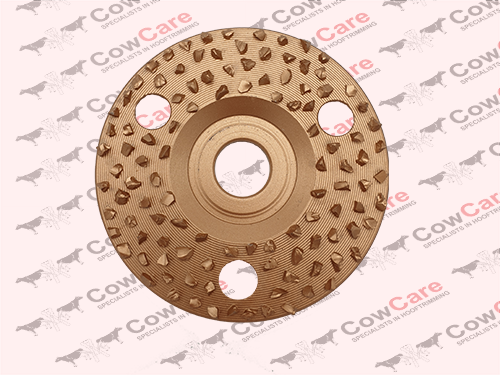 Hoof-trimminf-disc-Abresive-30