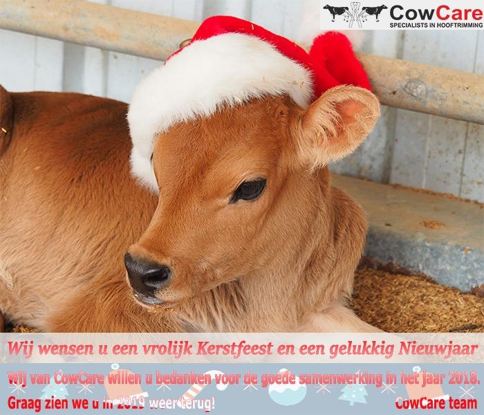 CowCare