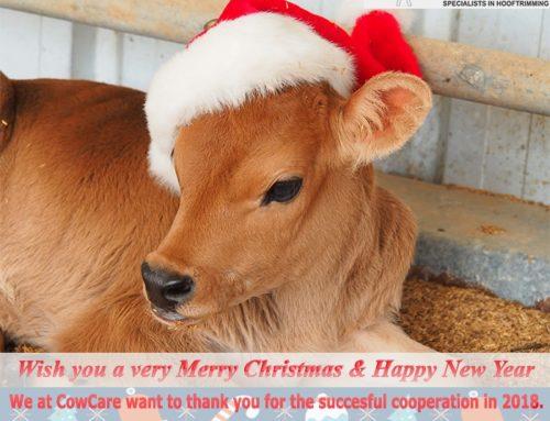 Priecīgus Ziemassvētkus un laimīgu Jauno gadu