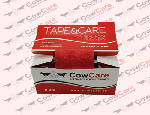 Product in the picture: This time the CowCare TAPE&CARE bandages