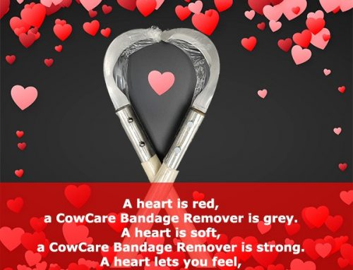 CowCare Valentines special!