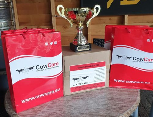 CowCare day for our Dutch clients