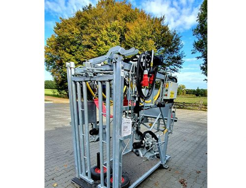 Hydraulic hoof trimming chute 650-SP2  for sale!