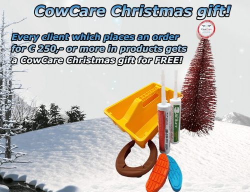 Christmas action at CowCare!