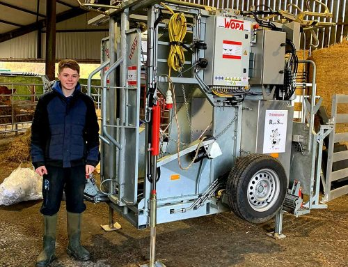 Happy clients! SA61 RS hoof trimming chute delivered