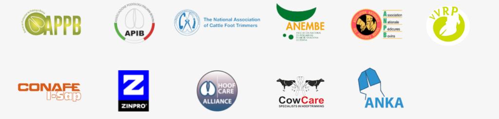 Organization and sponsors